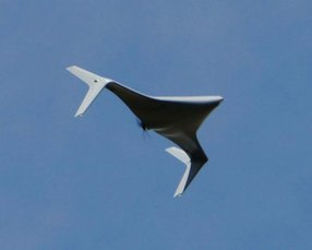 Northrop Grumman's Bat unmanned aircraft system. Photo courtesy of Northrop Grumman