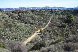 Coyote Hills: 760 homes proposed