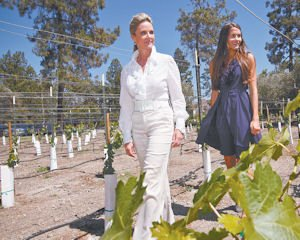 Tour: Westlake Village Inn GM Amy Commans, left, with marketing coordinator Isabella Crisman at the hotel's vineyard.
