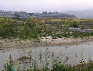 Marblehead in San Clemente: stalled amid Lehman bankruptcy
