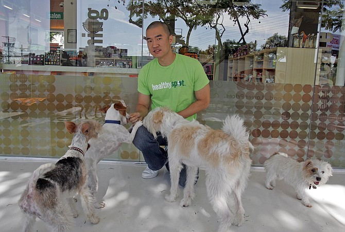 Andrew Kim with customers' pets enrolled in doggie day care at his Healthyspot location in West Hollywood.