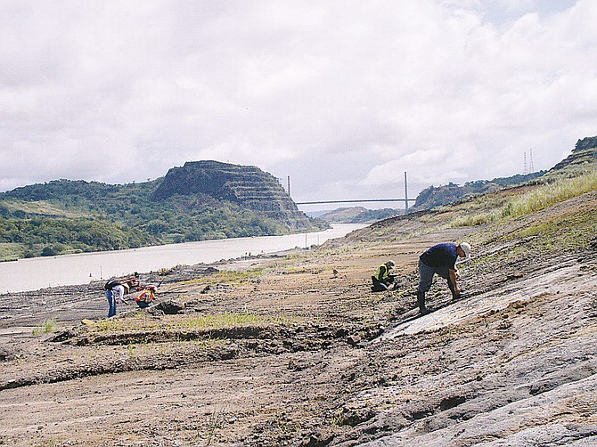 Stretch of the Panama Canal, which is undergoing widening work.