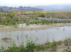 Marblehead: SunCal hopes to hang on to 247-acre project in San Clemente