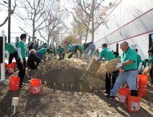 Tree planting: Yokohama Tire Corp. volunteers planted 300 seedlings