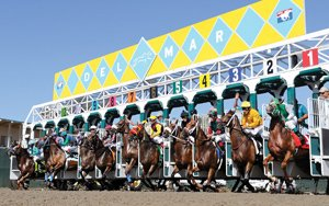 Thoroughbreds bolt from the starting gate during Del Mar Racetrack's 2010 season. Track officials say more than 660,000 visitors placed more than $430 million in bets in 2011.