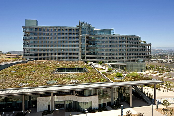 Spurlock Poirier designed the living roof for the recently opened Palomar Medical Center in Escondido. The roof serves as a healing space for patients and families in addition to providing an insulating feature for adjacent buildings.
