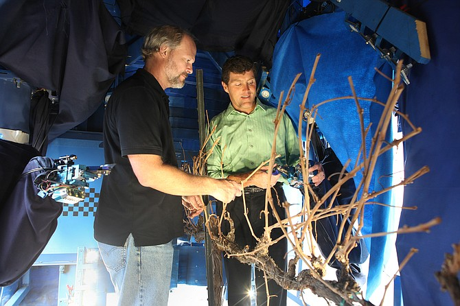 Vision Robotics Corp. Chief Technology Officer Bret Wallach, left, and Chief Operating Officer Tony Koselka show the prototype of the company's automated grapevine pruner. The contrast is stark between the high-tech systems integration under the machine's tarp, above, and its nondescript appearance on the outside.
