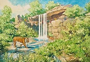 San Diego Zoo Global will soon open the new $19 million Tiger Trail exhibit at its Safari Park near Escondido. It is the latest of several new exhibits and conservation programs recently added there and at the flagship zoo in Balboa Park.
