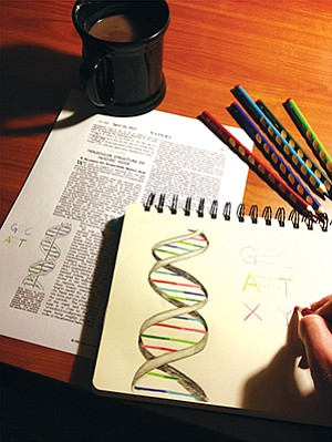 The Scripps Research Institute developed a third, synthetic DNA base pair coined X-Y; Synthorx Inc. has exclusive rights to this technology.
