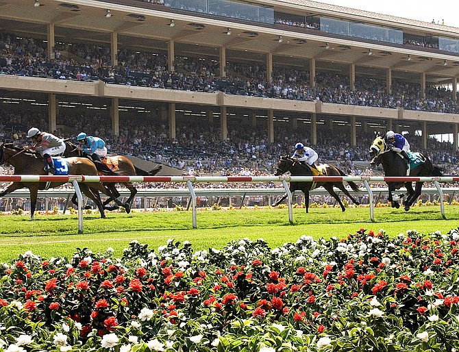 Del Mar racing officials say they will be delighted if the average attendance for the new 15-day fall meet is half of the approximate 17,000 visitors per day during the summer session.