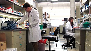 A lab technician conducts tests at OncoSec, a biotech that is working to increase the effectiveness of immunotherapy, which is a way to treat illness by stimulating the body's own immune system.