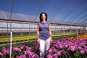 A bare plot of ground bloomed into a profitable business for Fallbrook flower grower Janet Kister. Among her offerings are a variety of coleus, below.