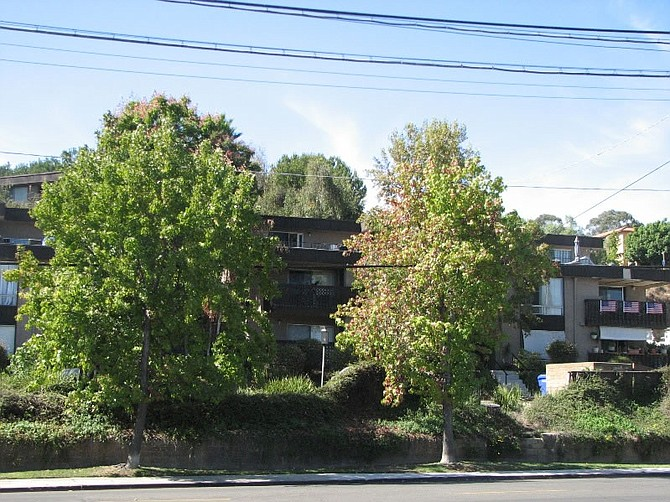 Palm Spring Apartments