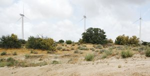 An artist's rendering depicts the Tule Wind Energy project. This view is from the Lark Canyon off-highway vehicle staging area, three miles north of Interstate 8 in eastern San Diego County.