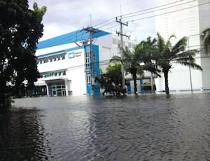 Park Place: Coyne guided Irvine-based Western Digital through big buy, recovery from Thai floods