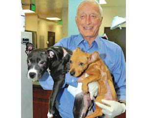 Pups: Dr. Richard Grossman with canine patients.