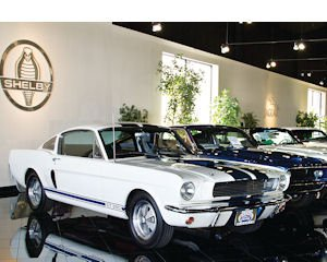 Muscle: A portion of the Carroll Shelby-designed cars in the collection owned by Galpin Motors in North Hills.