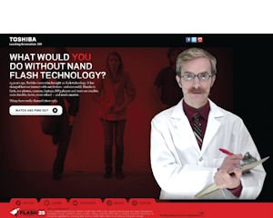 Screenshot: of Toshiba microsite commemorating its invention of flash-memory technology