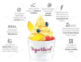 Yogurt: Yogurtland's stable of flavors includes nearly 80