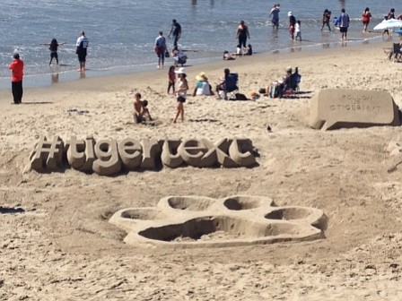 The TigerText sand sculpture in Santa Monica was created during a company party celebrating the launch of the redesigned app. Photo courtesy of TigerText.