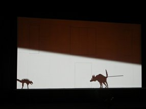 """An example of the animation projected onto the screen during """"The Magic Flute"""" at the L.A. Opera."""