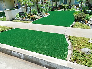 Watering Down: Drought-resistant plants border sections of synthetic lawn.