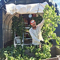 Jordan Brownwood of Nopalito Farms in Valley Center inspects his hops plants earlier