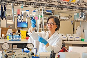 Research scientist Li Zhu works in the lab at Halozyme Inc., which is developing drugs that target cancer.