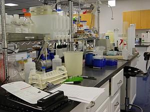 Incubating: Lab Launch.
