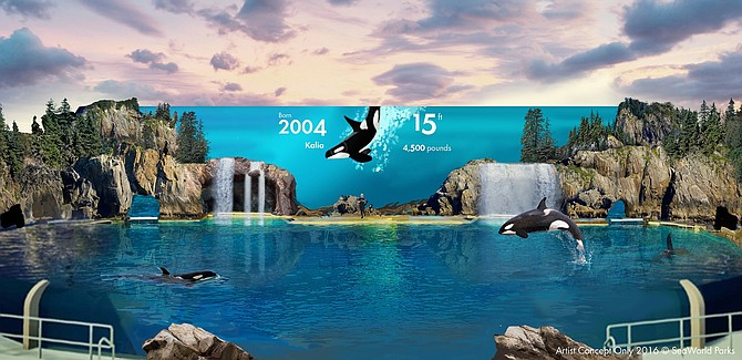 Parent Company Of Seaworld San Diego Investing 175 Million In Its U S Theme Parks San Diego Business Journal