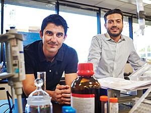Jason Poulos and Anthony Farina are developing a yeast-based cannibinoid.