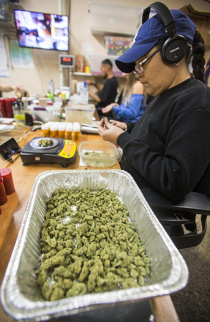 Budding Business: Worker at Venice Beach Care Center medical pot dispensary