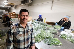 New Roots: Dante Cardenas at E.D. Produce in Vernon.