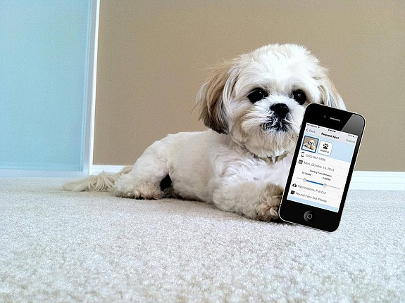 PetDesk makes an enterprise software product for pet service providers such as groomers, vets, and boarders. Photo courtesy of PetDesk.