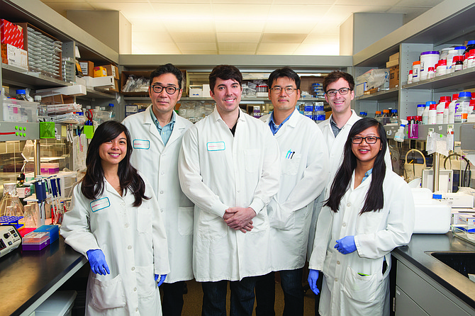 The Xycrobe team, Kristen Kuakini, from left, Mun Su Rhee, Thomas M. Hitchcock, Jeong Ho Kim, Blake Burchak and intern Lanchi Tran, are harnessing 'good' bacteria for use in skin treatments. Photo by Melissa Jacobs.
