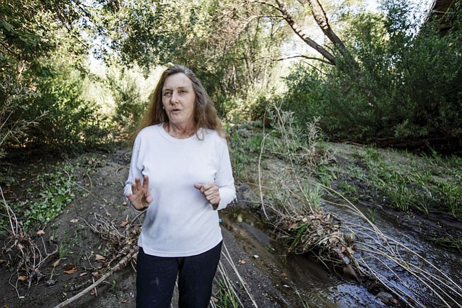 Opposition: Lynne Plambeck wants additional review of Newhall Ranch.