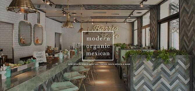 Tocaya Organica website.