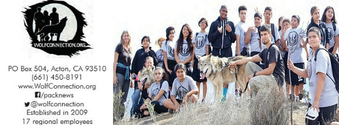 Alliance Charter Middle School's Wolf Connection 8-week Program Graduates with Youth Ambassadors Chance and Koda on their Graduation Hike.