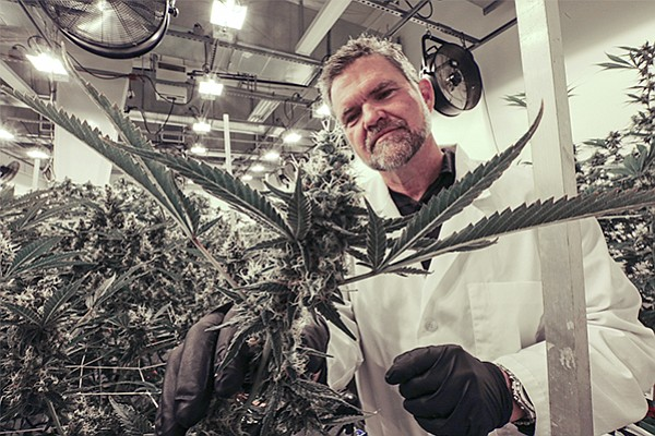 Outco CEO Lincoln Fish inspects cannabis plants in one of the company's grow rooms in an unincorporated area of El Cajon. File photo by Jamie Scott Lytle