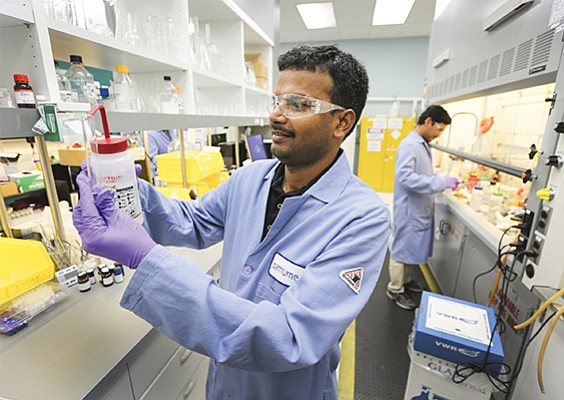 Samumed scientist Venkat Bollu works in the company's bustling lab. Samumed has an extensive drug pipeline.  File photo by Jamie Scott Lytle