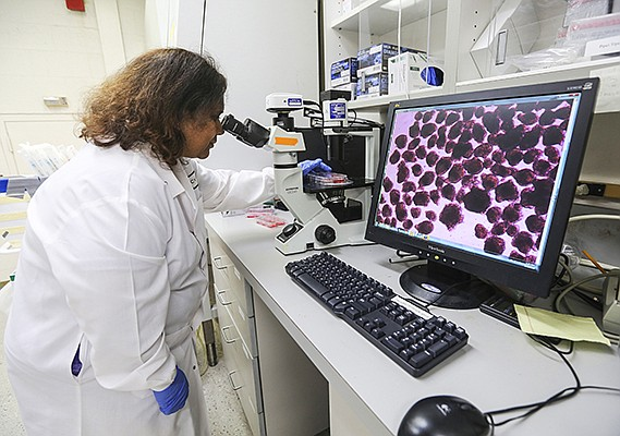 ViaCyte's Senior Scientist Anindita Bhoumik analyzes cells in the company's lab. The pioneering work in stem cell-derived therapy for Type 1 diabetes treatments has been a nearly 20 year journey for the company. The work has given the company a formidable IP portfolio.