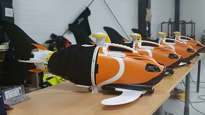 """Aquaai designs robotic """"fish"""" that can be used to measure ocean temperatures, oxygen levels and pH levels. Photo courtesy of Aquaai"""