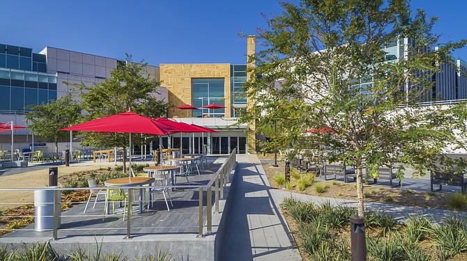 JLABS shares resources with neighboring Janssen Research and Development in Torrey Pines, including this outdoor seating area. Startups also have access to mentorship from Janssen researchers. Photo courtesy of JLABS.