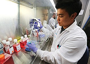 In a file photo scientist Wonjong Si prepares cells at StemoniX. The company recently moved into a larger facility. Photo by Jamie Scott Lytle.