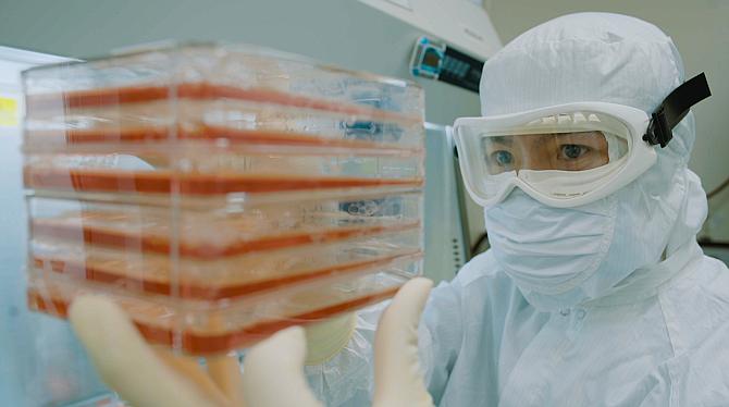 A laboratory worker with Capricor Therapeutics Inc.