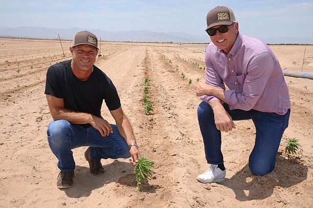 Proof of Concept: (left) Cadiz CEO Scott Slater and SoCal Hemp CEO Graham Farrar with the successful test hemp crop on Cadiz's desert land.
