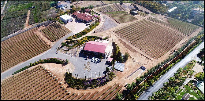 Ed Embly is owner of Hungry Hawk Vineyards in Escondido and president of the San Diego County Vintners Association. Photo courtesy of the San Diego County Vintners Association.