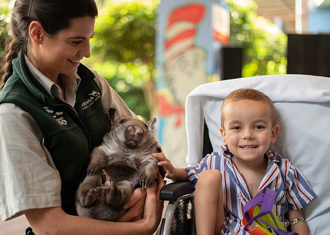 To celebrate the launch of the San Diego Zoo Kids Channel, young patients were treated to a visit with some animal ambassadors at the Children's Hospital at Westmead on Nov. 18. Photo courtesy of San Diego Zoo Global.