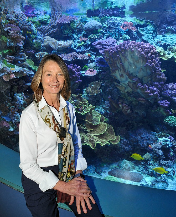 Dr. Sandy Trautwein, Vice President of Animal Husbandry, Aquarium of the Pacific