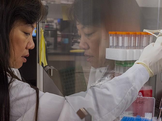Photo courtesy of Aspen Neuroscience. Laboratory workers at Aspen Neuroscience work on Parkinson's disease treatments.